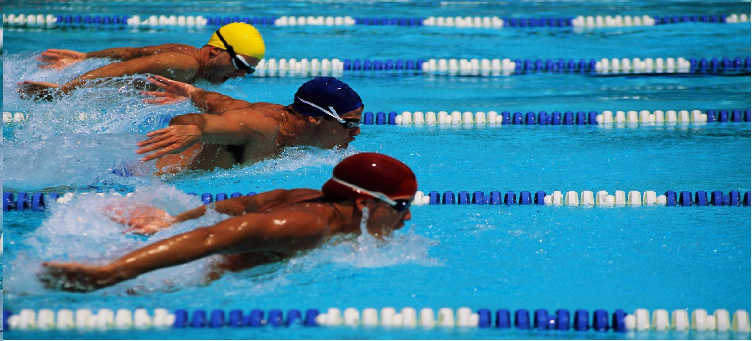 bc provincial swim meet 2013 honda